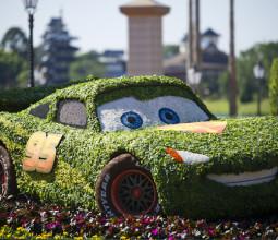 Cars.flower